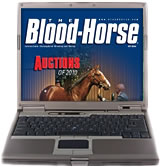 Auctions of 2010 - Digital Edition