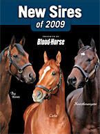Thoroughbred Sires: New Stallions for 2009