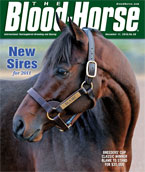 Thoroughbred Sires: New Stallions for 2011
