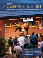 2013 Summer Select Sales Guide