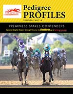 Preakness 138 Contenders: Pedigree Profiles & Sire Analysis